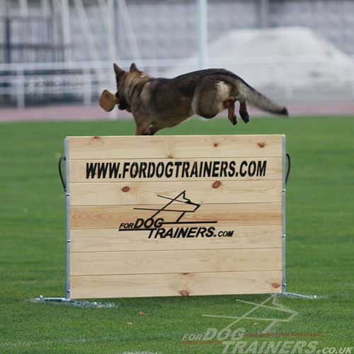 schutzhund dog training jump