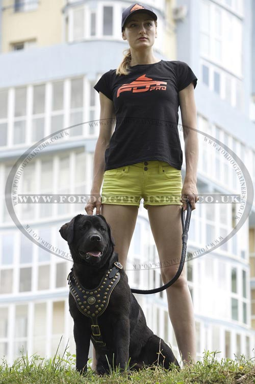 Cotton T-Shirt for Dog Trainer