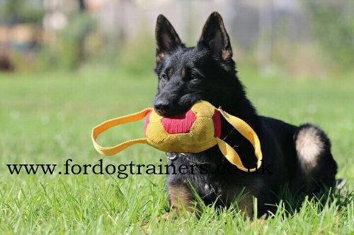 Soccer Ball Dog Biting Tug with Handles