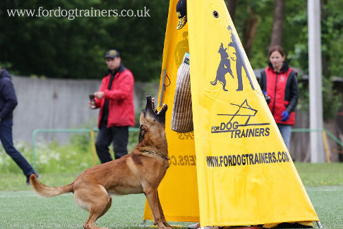 Schutzhund Blind for Helper