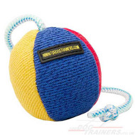 Dog Ball on Rope for Fun Dog Games | Stuffed Dog Toy Ball 11 cm