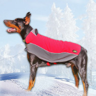 Waterproof Dog Coat for Doberman Walking