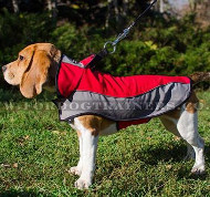 Dog Coat Harness for Beagle | Small Dog Coat for Beagle