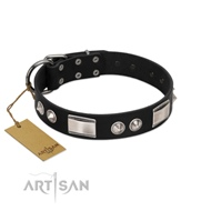 Artisan Dog Collar Designer Brands with Brilliant Finery
