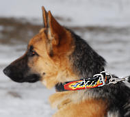 Flames Hand painted leather dog collar for ❺ German Sheph