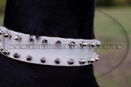 Dog Collars UK New Design White Spiked Leather