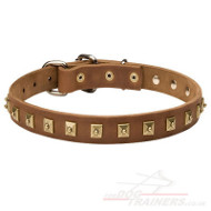 Dog Collars with Studs, 1 inch wide leather