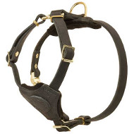 Small Dog Harness for Puppies| Dog Harness for Small Dog Breeds