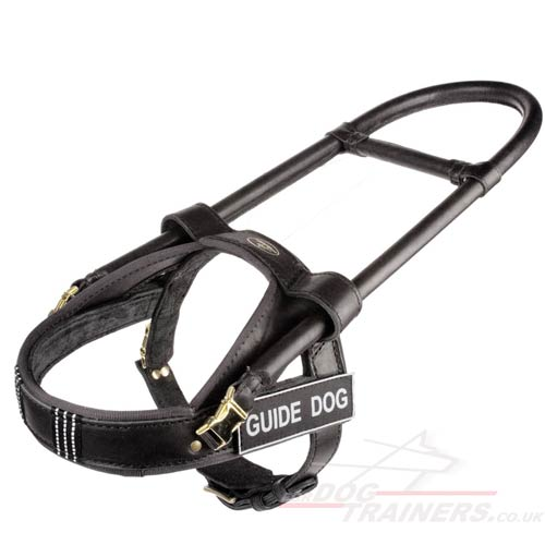 Guide dogs leather harness