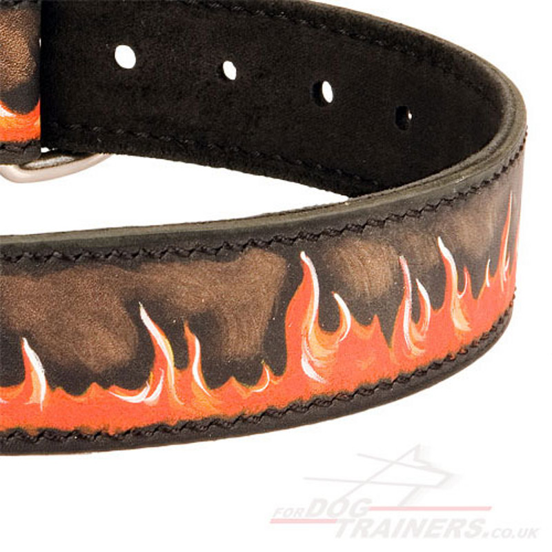 italian mastiff dog collar. Designer Dog Collar, Painted