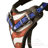 Painted Dog Harness American Pride