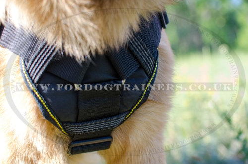German Shepherd Dog Harness Padded