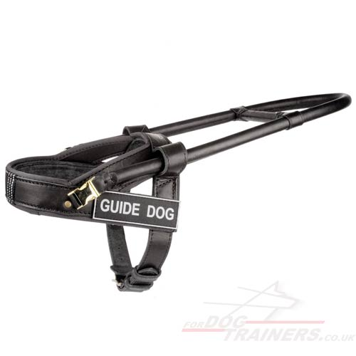 Assistance dog leather harness