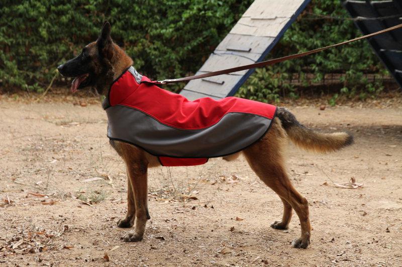 Large Dog Raincoat Uk