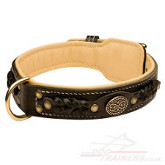 luxury dog collar with lining and braided design