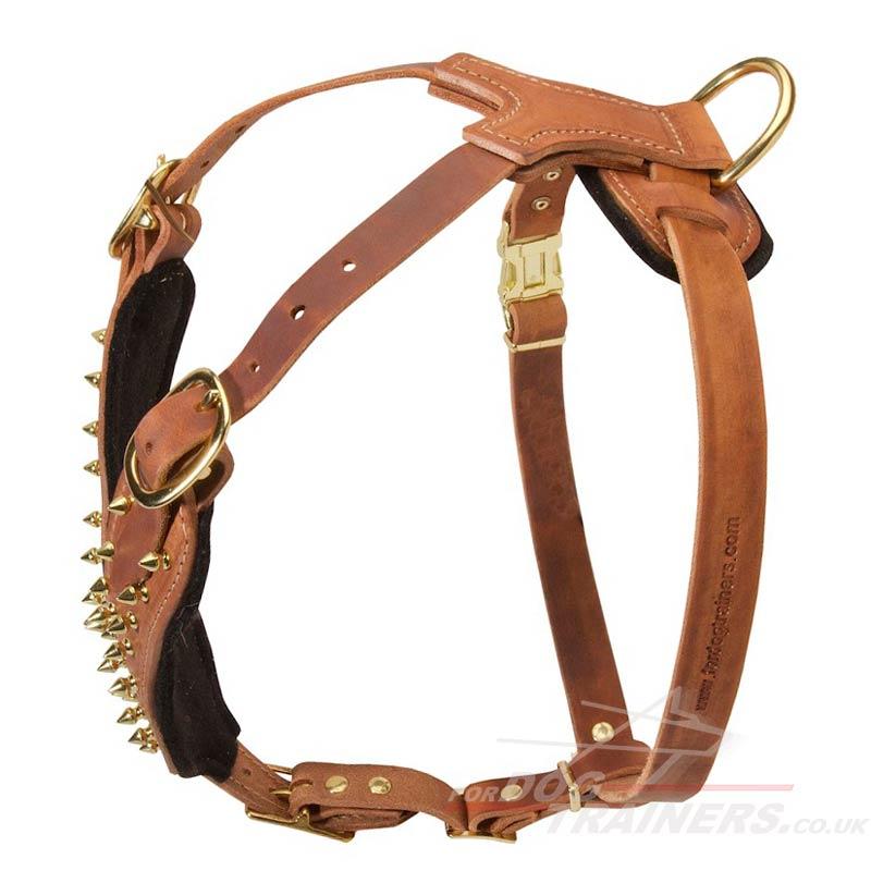 Designer Leather Dog Harness Uk