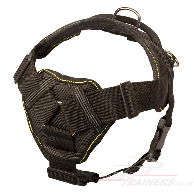 Staffordshire Bull Terrier Harness With Handle 163 48 22