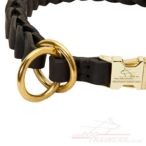 Large dog choke collar