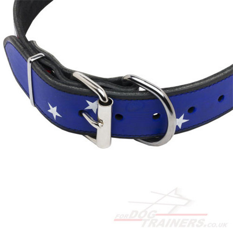 Unique Dog Collar Hand Painted Dog Collars 163 38 50