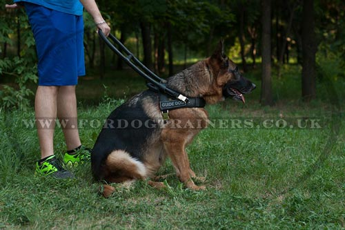 Guide Dog Harness with Handle