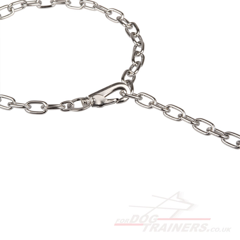 check chain collars with snap hook