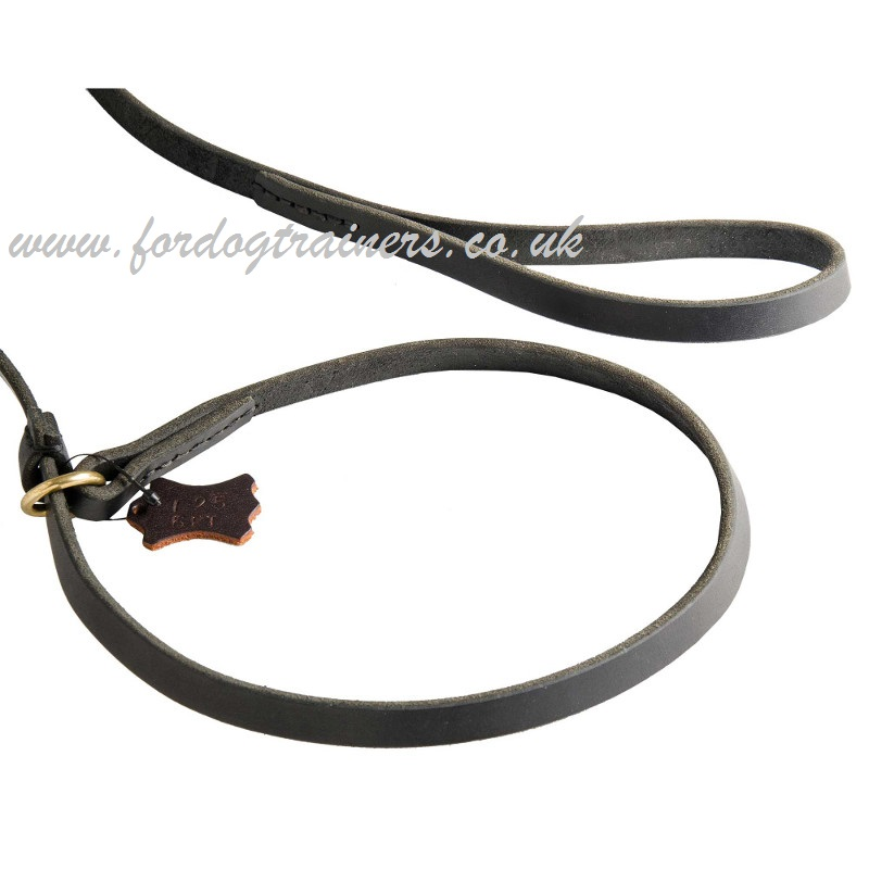 leather dog collar and lead