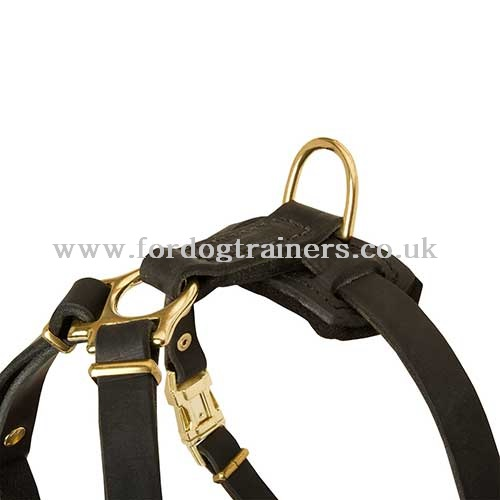 Small dog harness of natural leather