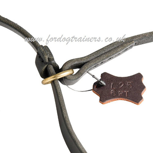 leather dog collar and lead combined