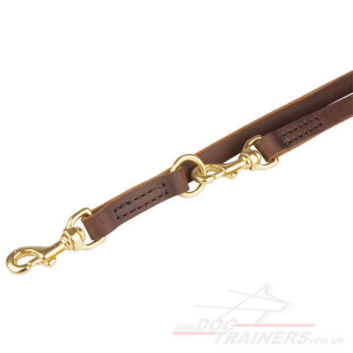 Best Leather Dog Lead with Brass Fittings