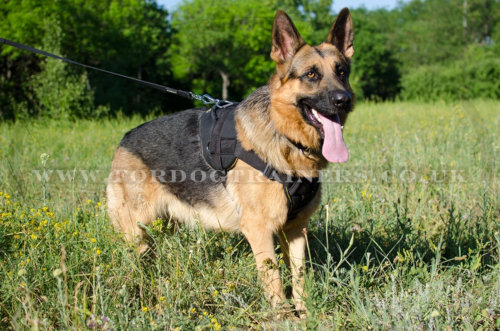 Dog Harness for Large German Shepherd
