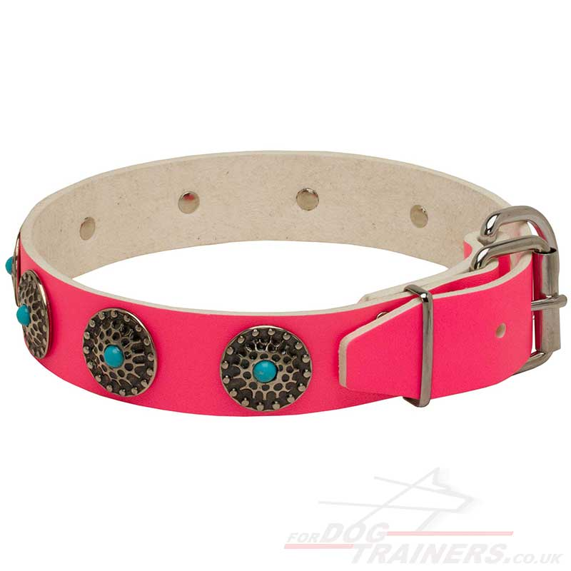 Pink Dog Collars Limited Edition Designer Dog Collar New
