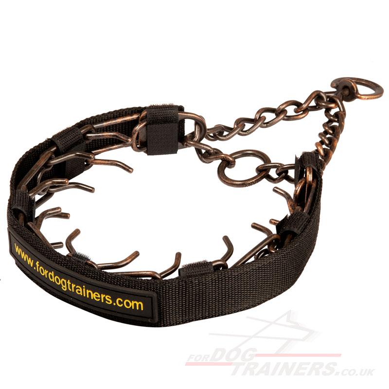 dog training prong collar: