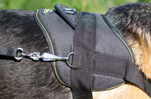 Walking Dog Harness for German Shepherd
