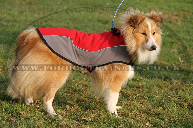 Shetland Sheepdog Jacket | Best Dog Harness for Sheltie - £29.50