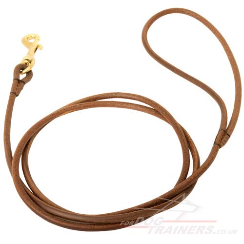 leather dog show leads