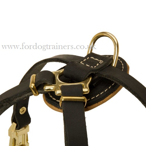 Royal Dog Harness for Small Dog