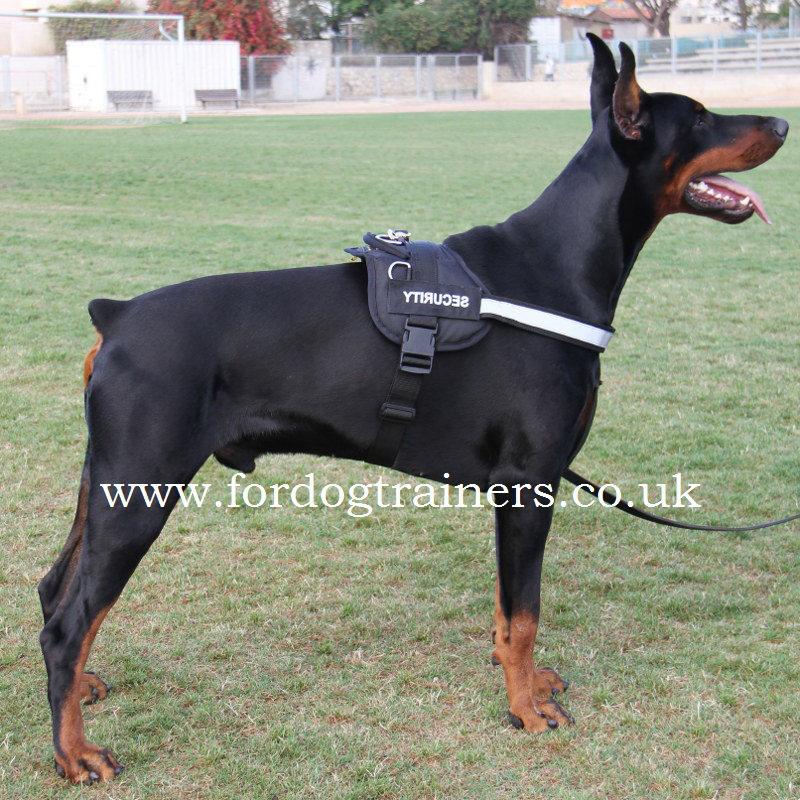 Nylon dog harness for Doberman