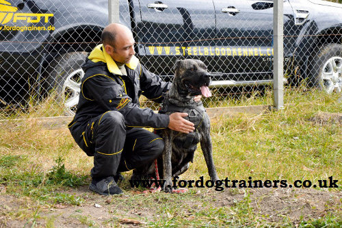 Strong Dog Harness for Schutzhund