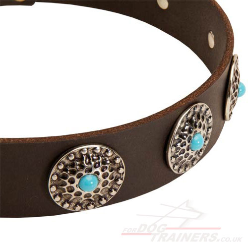 luxury dog collars