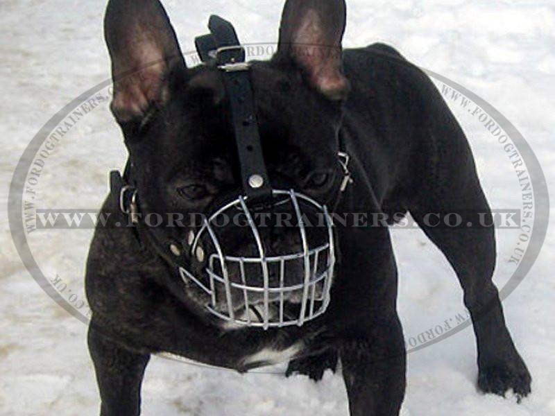 French Bulldog Basket Muzzle for Flat Nose Dog