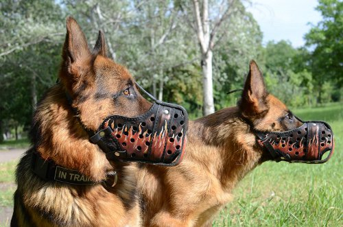Outstanding Leather Basket Dog Muzzle for Large Breeds