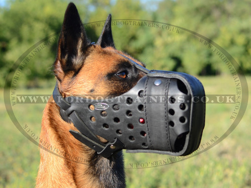 Closed Leather Dog Muzzle for K9 Dogs