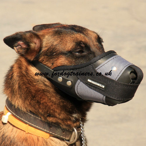 Best Dog Muzzle To Prevent Eating
