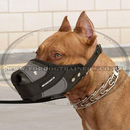 Black Plastic Dog Muzzle Comfortable Lightweight Dog