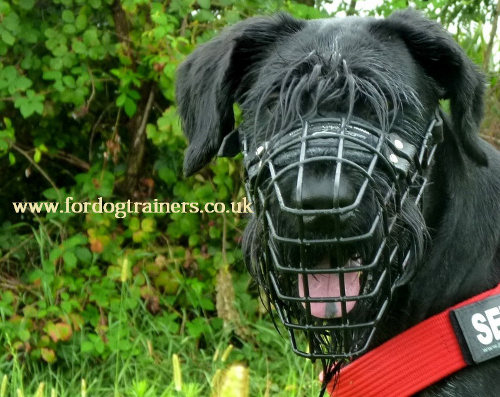 Wire Dog Muzzle Basket