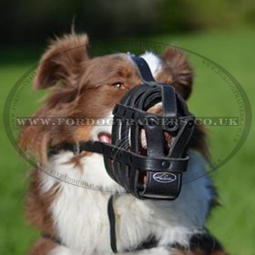 light leather dog muzzle padded