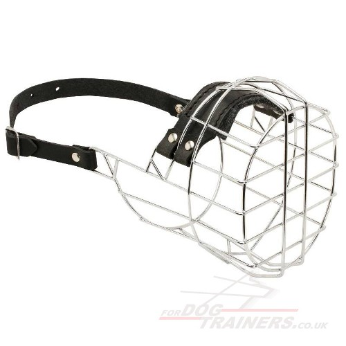 Buy Boxer Dog Muzzle Basket Type
