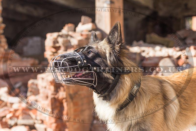 Basket Dog Muzzle for Long Nosed Dog UK