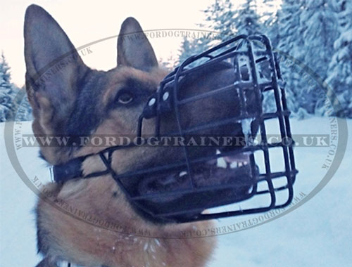 German Shepherd Muzzle UK Online