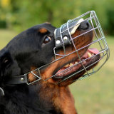 Comfortable padded dog wire muzzle